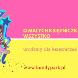 urodziny dla dziewczynki, urodziny dla dzieci Bydgoszcz, organizacja urodzin dla dzieci w Bydgoszczy