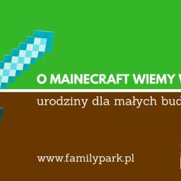 urodziny dla dzieci w stylu mainecraft, Family Park Bydgoszcz
