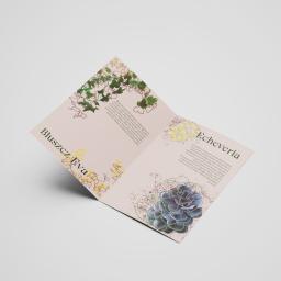 """projekt broszury """"Rośliny"""""""