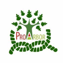 Pro-Arbor Bartłomiej Hojdas - Drewno kominkowe Bystra