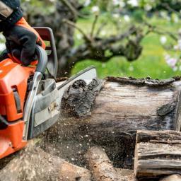 Drewno kominkowe Lębork 2