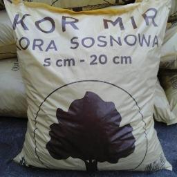 KOR-NIR - W ogrodzie, przed domem Tłuchówek