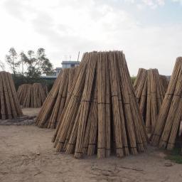 Natural Bamboo Patryk Pajor - Domy w Technologii Tradycyjnej Starogard Gdański