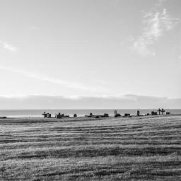Daniel Strojnowski Photograpy - Sesje zdjęciowe Gdynia