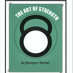 The Art of Strength - Trener personalny Gliwice