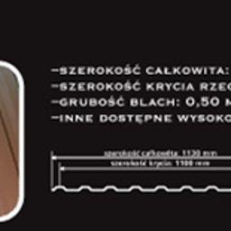 Grzegorz Grudziecki - Pokrycia dachowe Drzewica