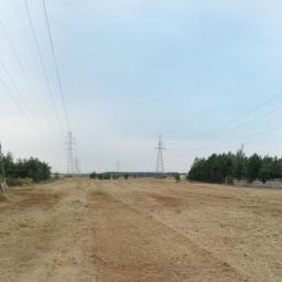 teren po usunięci plantacji wierzby