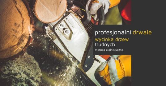 Wycinka i Przycinanie Drzew. Profesjonalni Drwale. - Ekipa budowlana Sosnowiec