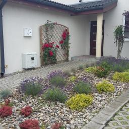 Ogrodnik Łódź 4