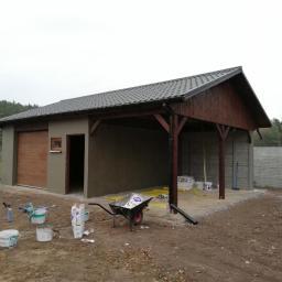 Lisek - Malarz Bolewice