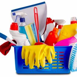 Paula Clean - Pomoc w Domu WOLSZTYN