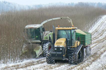 JAMIR S.A. - Giełda rolnicza Gdańsk
