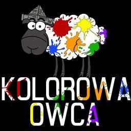 KOLOROWA OWCA Grzegorz Kątnik - Tapetowanie Wrocław