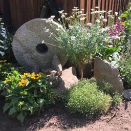 Projektowanie ogrodów Świecie 18