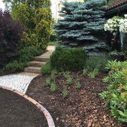 Projektowanie ogrodów Świecie 15