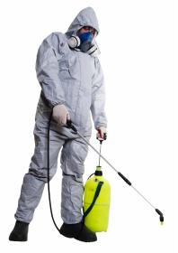 Insektclean - Dezynsekcja i deratyzacja Kielce