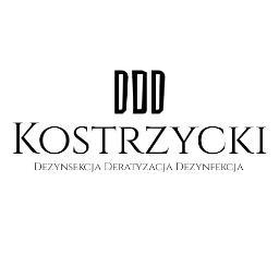Paweł Kostrzycki Dezynsekcja Deratyzacja - Dezynsekcja i deratyzacja Wołów