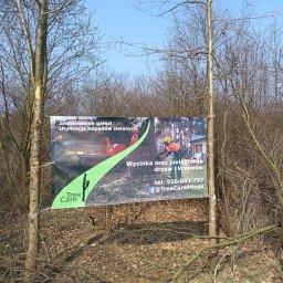 Tree Care - Altany Mińsk Mazowiecki