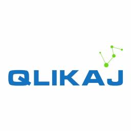 Qlikaj Marcin Pielizg - Zarządzanie projektami IT Ruda Śląska