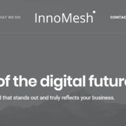 InnoMesh Sp. z o.o. - Logo dla Firmy Wrocław