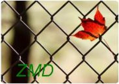 ZMD Zakład Metalowo-Drzewny - Ogrodzenia panelowe Gorzyce