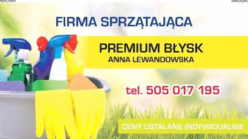 PREMIUM BŁYSK - Pomoc domowa Malbork