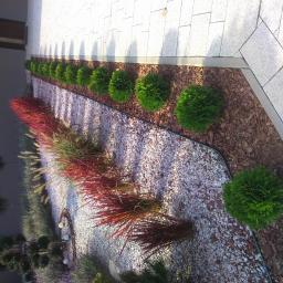 Projektowanie ogrodów Strzegom 3