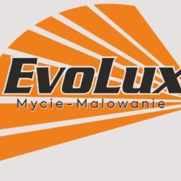 Evolux Kompleksowe Mycie i Malowanie - Malowanie elewacji Tetyń