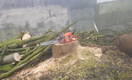 Janko - Trociny i zrębki drzewne Chechło drugie