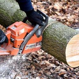 Wycinka drzew prace ogrodowe - Prace działkowe Złocieniec