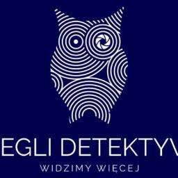 Detektyw Poznań 1