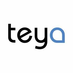 Agencja Reklamowa TEYA - Zarządzanie projektami IT Pruszcz Gdański