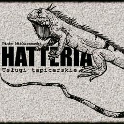 Hatteria - Tapicer Brzeg