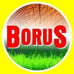 BORUS - Ogrody Zimowe Kaźmierz