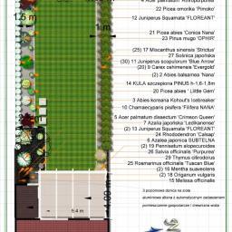 Projektowanie ogrodów Nysa 12