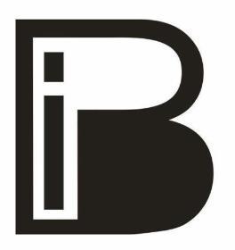 BIP Przedsiębiorstwo Wielobranżowe - Sprawozdania Finansowe Łódź