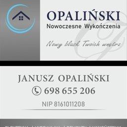 logotyp i wizytówka dwustronna OPALIŃSKI Nowoczesne Wykończenia