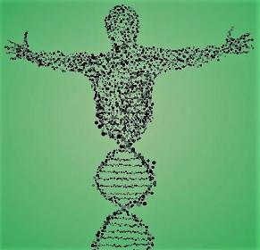 Centrum Badań Genetycznych Bio-Genetica - Gabinety lekarskie i kosmetyczne Bydgoszcz