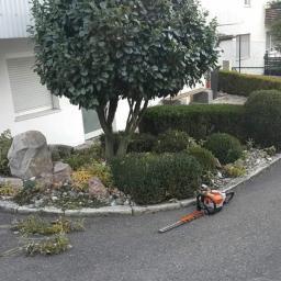 OGRODI usługi ogrodniczo-porzadkowe - Ogrodnik Świdnica