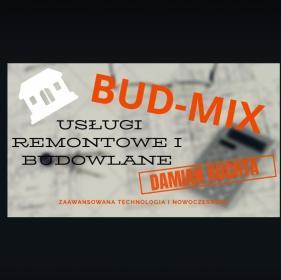 Bud-mix - Remont łazienki Królik polski