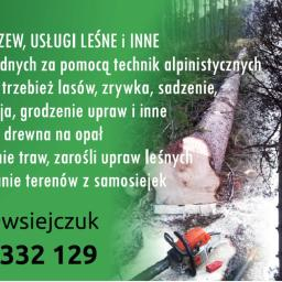 Wycinka Drzew, Drzew Trudnych, Usługi Leśne i inne - Prace działkowe Białystok