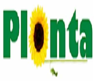 PPHU Planta - Projektowanie ogrodów Ostrów Wielkopolski