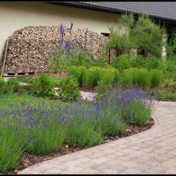 Projektowanie ogrodów Zabłocie 4