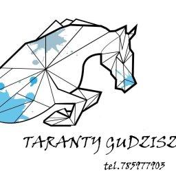 Ośrodek Jeździecki Taranty Gudzisz - Jazdy Konne Gudzisz