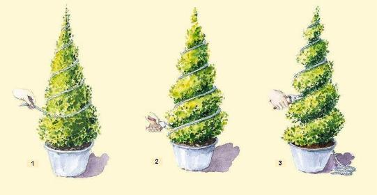 Ogrody - Ogrodnik Rzęszyce