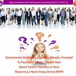 Web-Profit S.C. W. Serafin, M. Kuźlik - Agencja SEO Katowice
