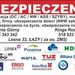 P.U. Krystyna Górna - Ubezpieczenie firmy Łazy