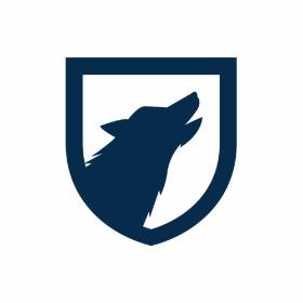 Wolf Wywiad Detektywistyczny - Detektyw Warszawa