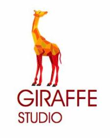 Giraffe Studio - Bazy danych Kraków