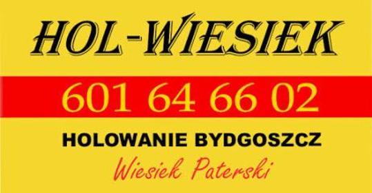 Pomoc Drogowa Hol Wiesiek - Usługi motoryzacyjne Bydgoszcz